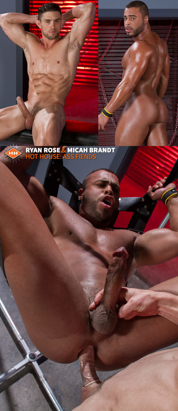 HotHouse Ass Fiends Micah Brandt gets pounded by Ryan Rose