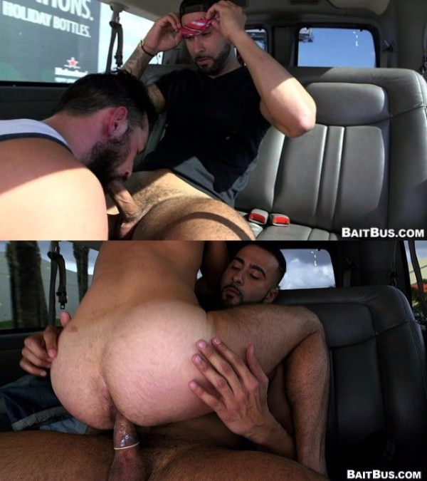 BaitBus Amateur Anal Sex With A Man Bear