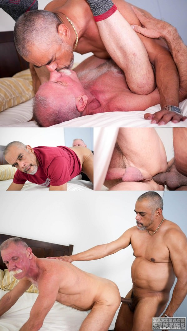 BarebackCumPigs Scott Reynolds Tancredo Buff Bareback