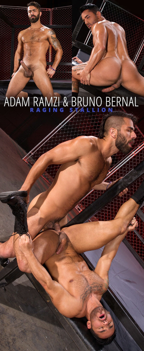 RagingStallion Primal Adam Ramzi pounds Bruno Bernal