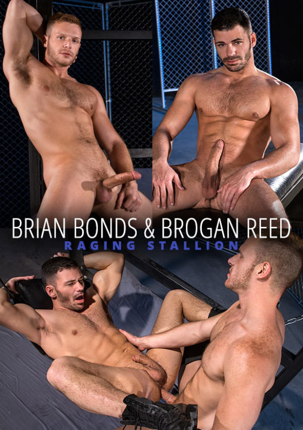 RagingStallion Primal Brian Bonds and Brogan Reed flip fuck