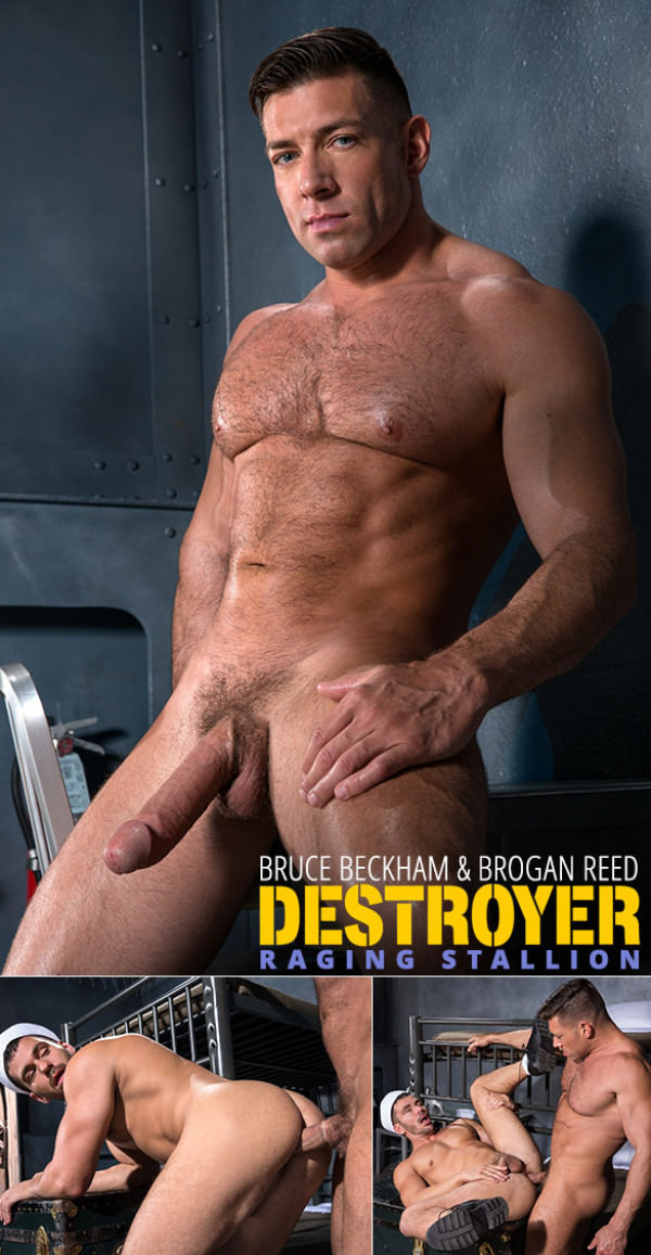 RagingStallion Destroyer Bruce Beckham pounds Brogan Reed