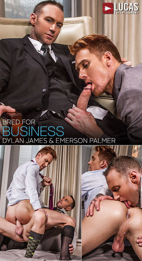 LucasEntertainment Gentlemen 18: Bred for Business Dylan James gives Emerson Palmer's ass professional training Bareback