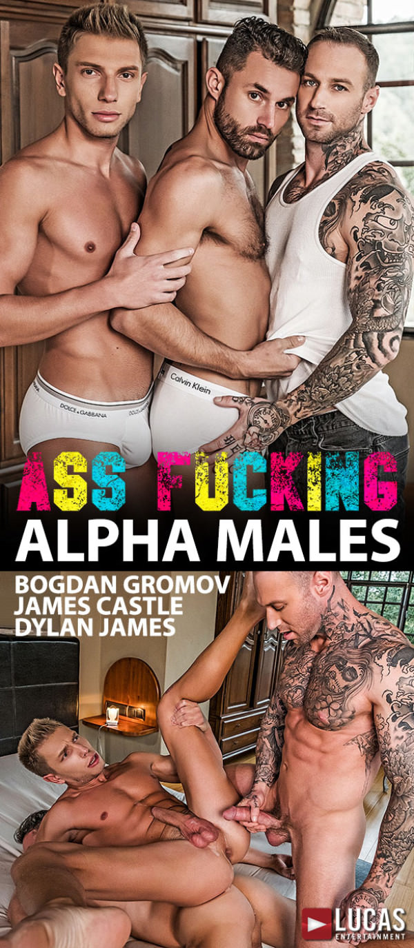 LucasEntertainment Ass Fucking Alpha Males Dylan James bangs Bogdan Gromov and James Castle hard and raw