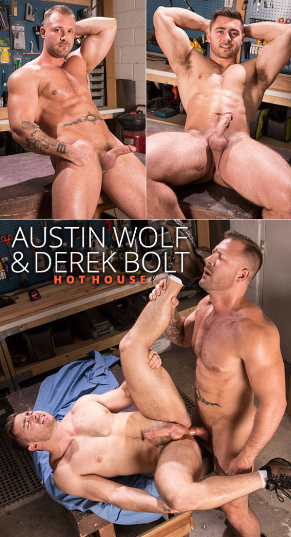 HotHouse Dirty Work Austin Wolf fucks Derek Bolt