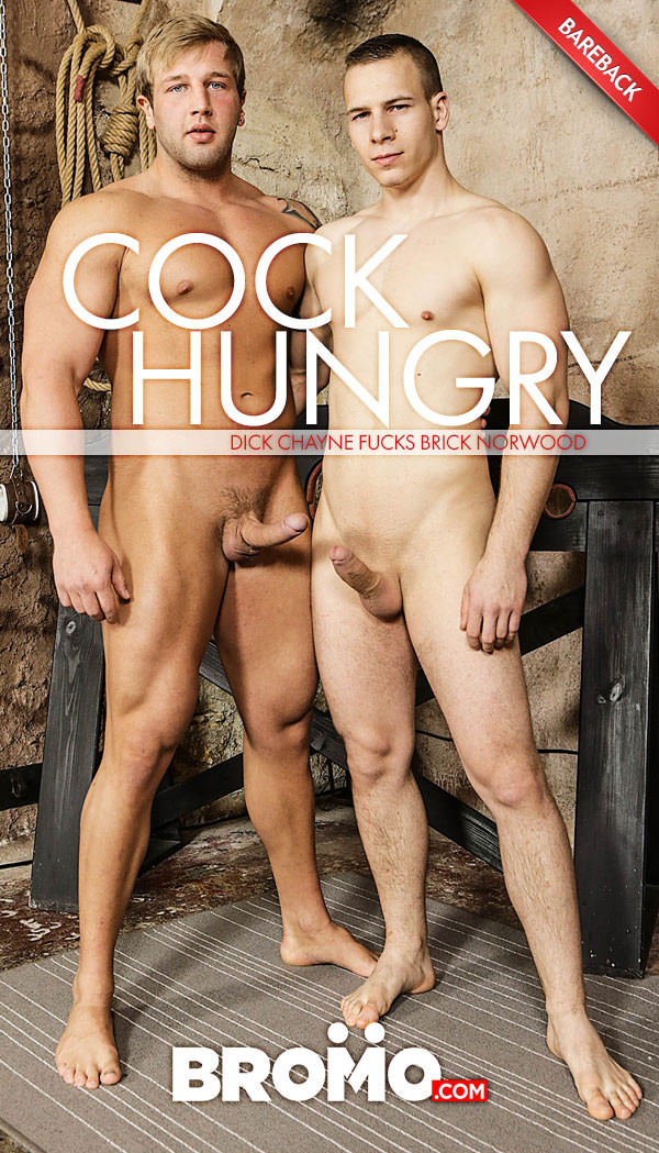 Bromo Cock Hungry Dick Chayne Fucks Brick Norwood Bareback