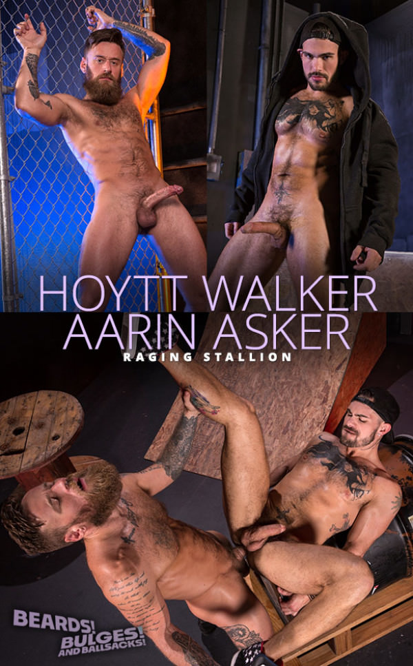 RagingStallion Beards, Bulges Ballsacks Hoytt Walker pounds Aarin Asker