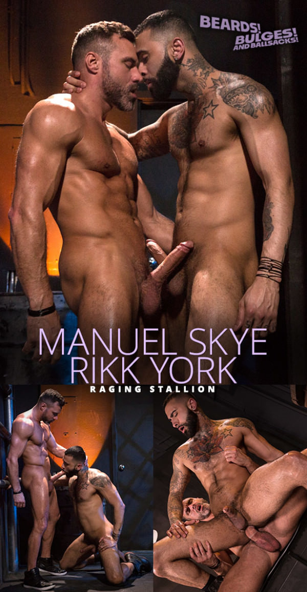 RagingStallion Beards Bulges Ballsacks! Muscle daddy Manuel Skye slams Rikk York