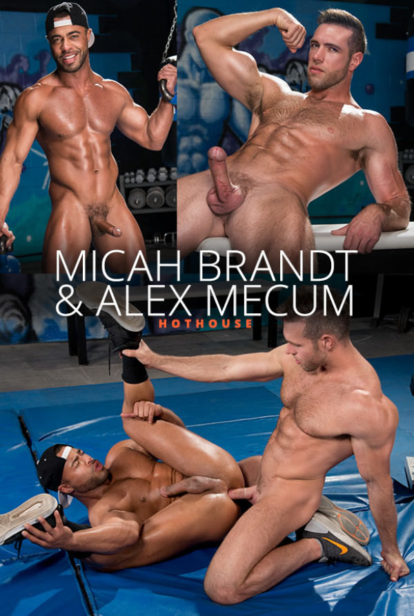 HotHouse The Trainer: No Excuses Alex Mecum pounds Micah Brandt