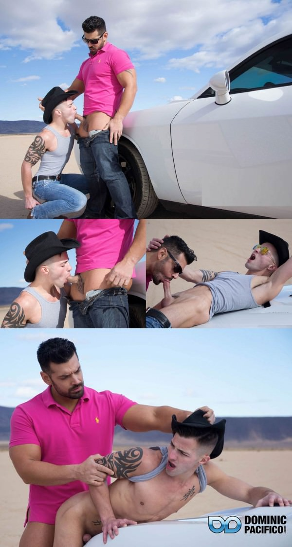 DominicPacifico The Hitchhiker Marcus Ruhl Casey Everett