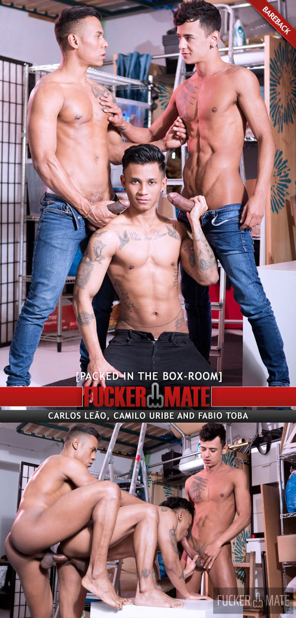 Fuckermate Packed In The Box-Room Carlos Leão, Camilo Uribe Fabio Toba Bareback