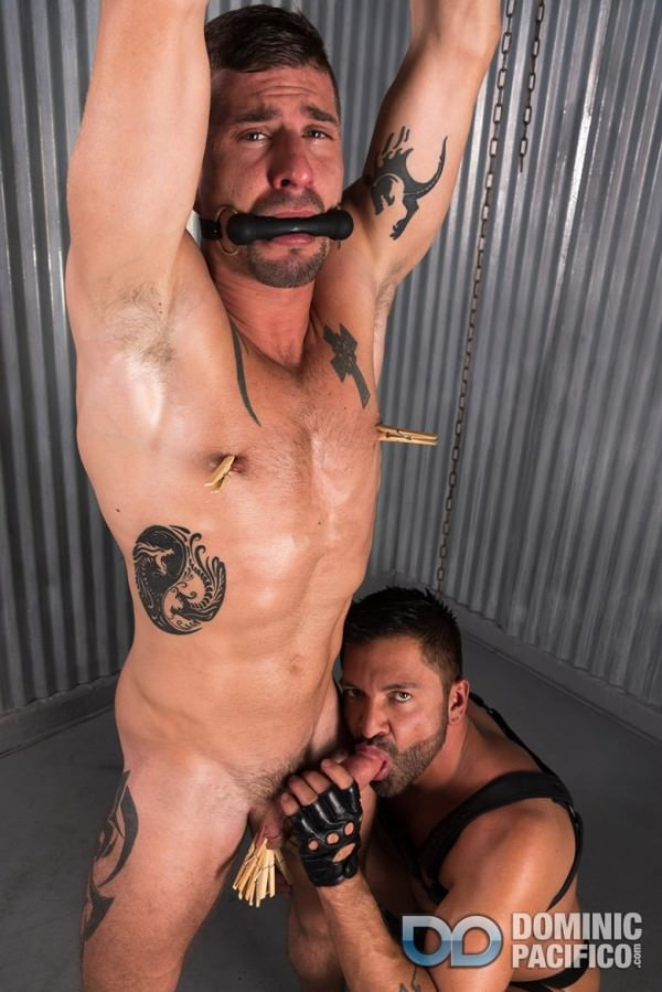 DominicPacifico Sean Maygers Edged Hard
