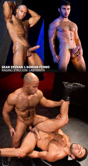 RagingStallion – Labyrinth – Sean Zevran & Dorian Ferro