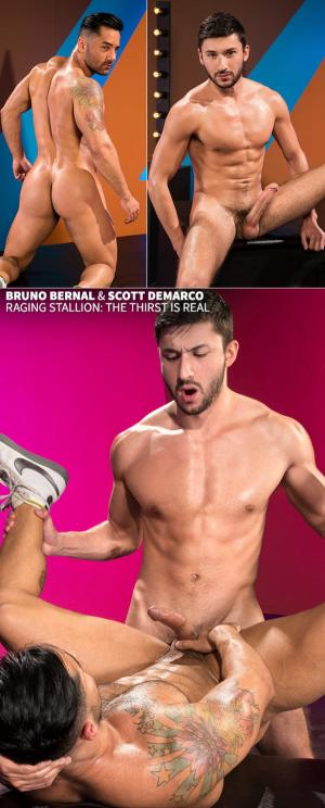 RagingStallion – The Thirst Is Real – Bruno Bernal & Scott Demarco