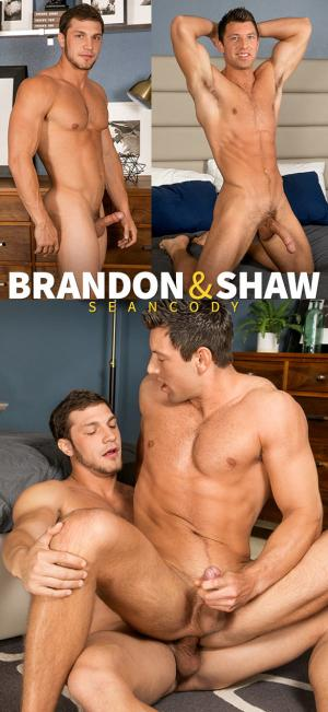 SeanCody – Brandon fucks Shaw raw