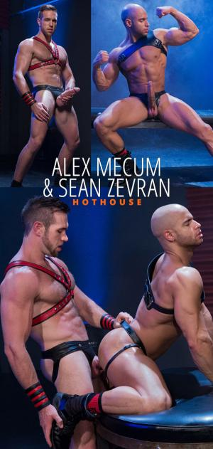 HotHouse – Skuff: Rough Trade 2 – Alex Mecum and Sean Zevran pound each other