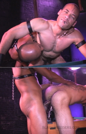 BlackBreeders – Rough And Tough – Ramey West, Kamrun, Wade Stone & Lance Longwood – Bareback