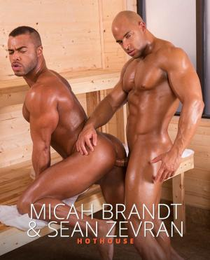 HotHouse – Bathhouse Ballers – Micah Brandt and Sean Zevran flip fuck