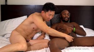 "PeterFever – ""NO NO,"" FOR NOW  – Bren Bradshaw & Cody Hong"
