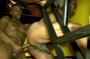 BlackBreeders – Sex in the Stairwell – Drae Dixsem & Tancredo Buff