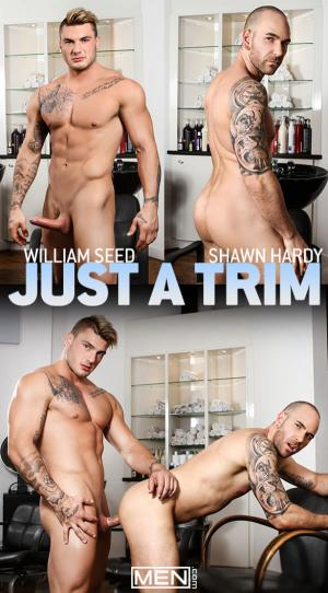 Men.com – Just a Trim – William Seed fucks Shawn Hardy – Str8toGay